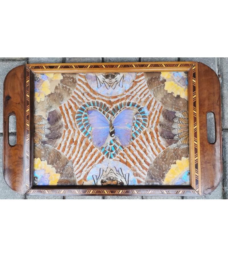 Padėklas drugelių sparnų. Art Deco. Tarpukaris. Brazilija. Kaina 157