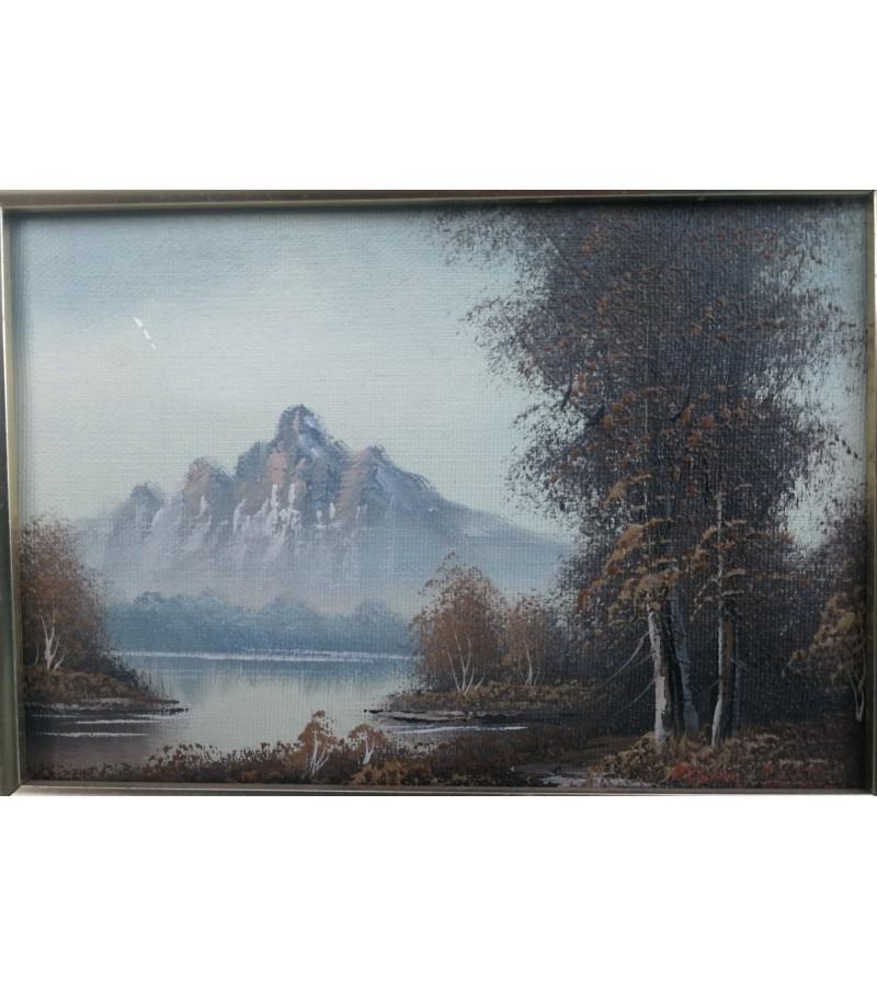 Paveikslėlis Kalnai. Aliejus, drobė, medinis rėmelis. Kaina 42