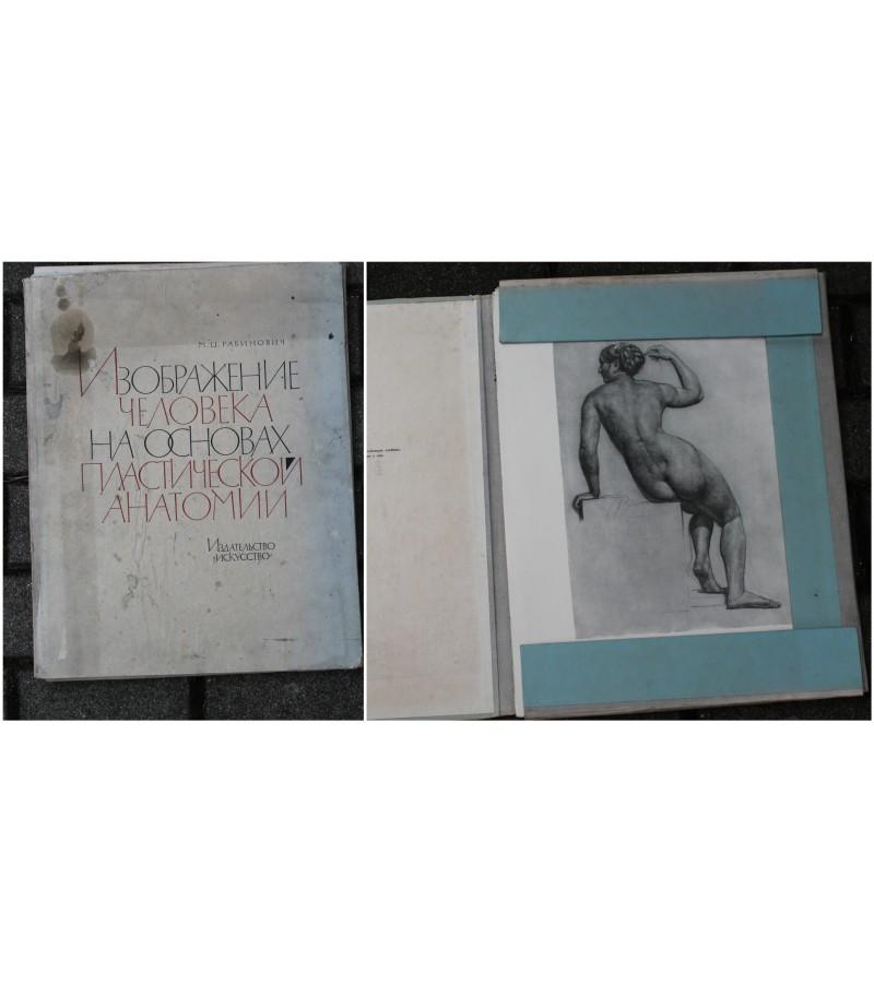 Albumas Zmogaus vaizdavimas plastines anatomijos pagrindu. Kaina 18